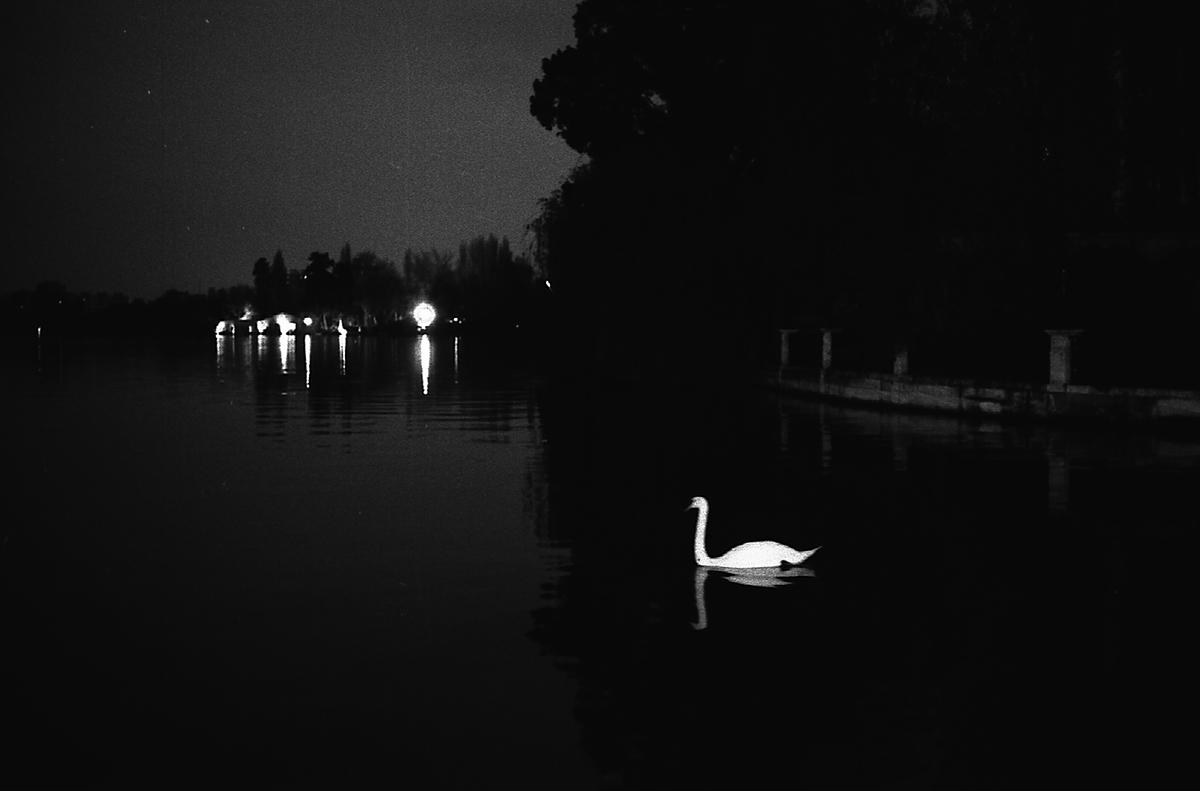 Lac d'Enghien. Je rentre chez ma mère.