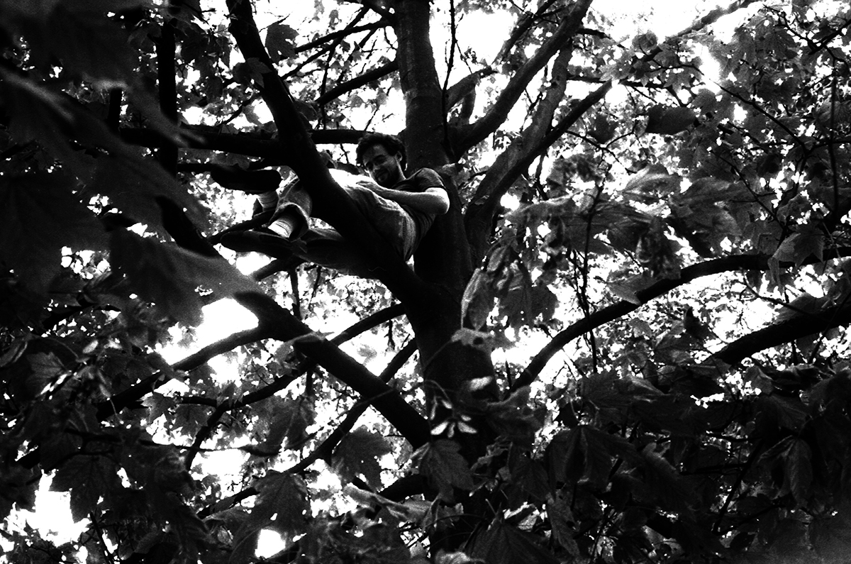 Kevin Obsatz dans les arbres