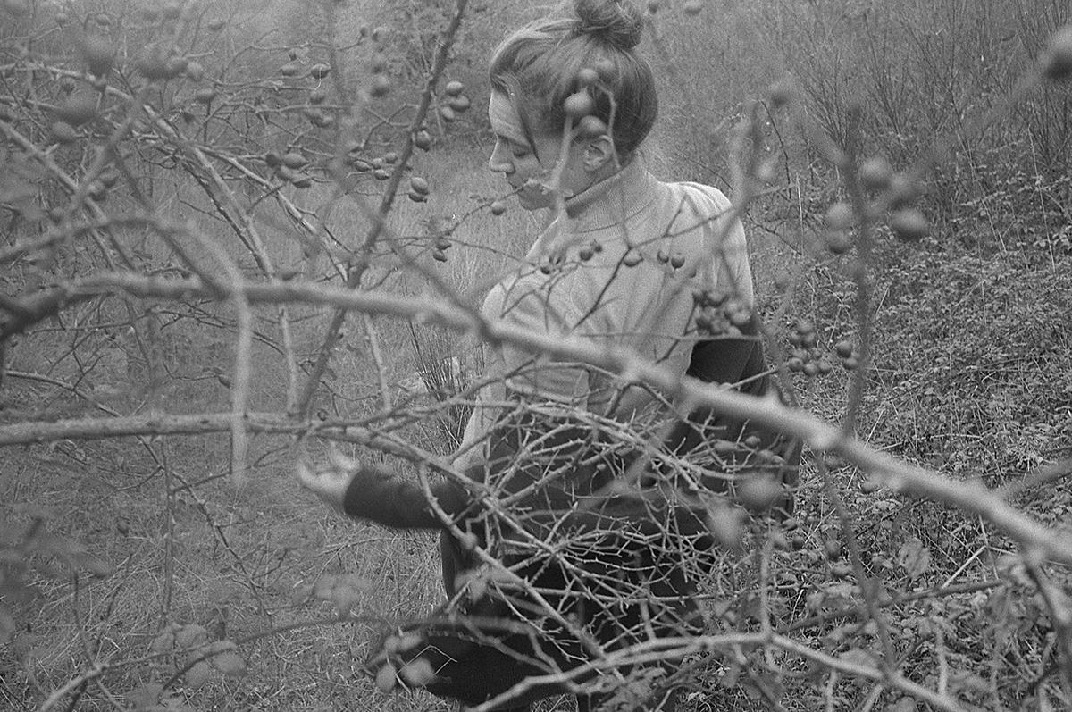 L'amour et les plantes religieuses poussent et te protègent, Camille Camille Rivière La Loire